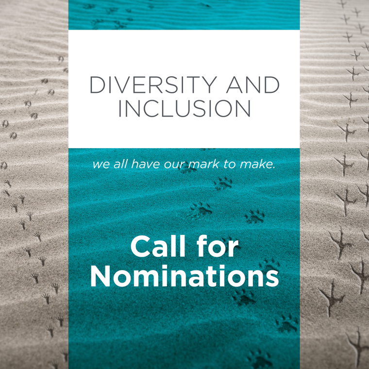 Call%20for%20nominations%20-%20Diversity%20and%20Inclusion%20Advisory%20Group
